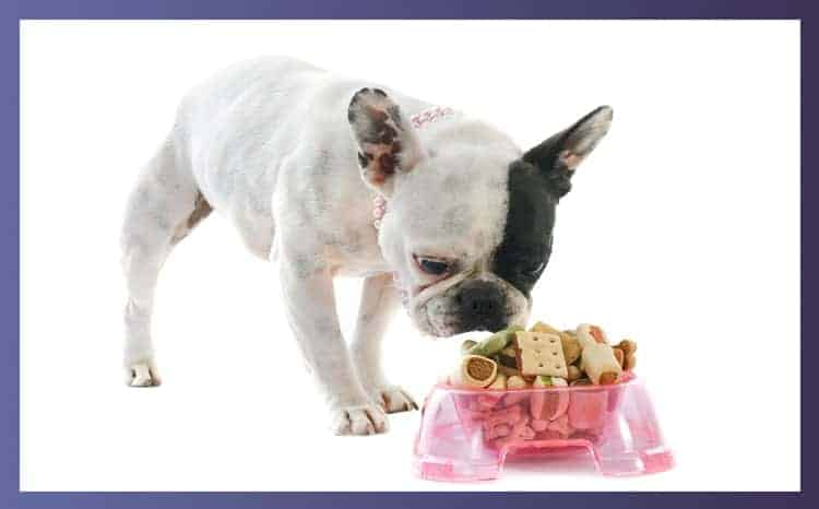 What are good treats for Bulldogs