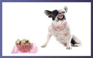 What are good treats for Bulldogs 3