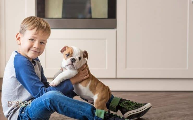 Are Bulldogs Good With Kids