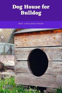 Best 6 Dog House - Pinterest Website Size