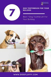 Best 7 Dog Toothbrush For Your Bulldog - Pinterest Image