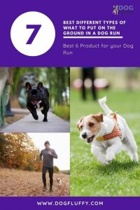 Best Different Types Of What To Put On The Ground In A Dog Run - website pinterest