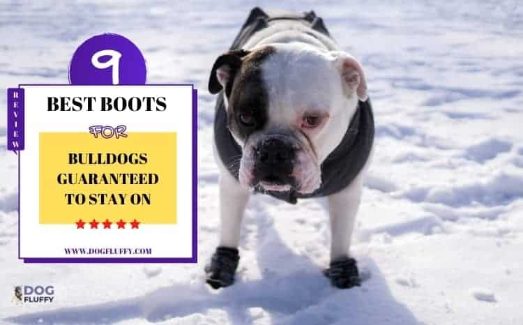 Boots For Bulldogs
