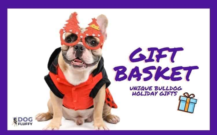 Gift Basket - Unique Bulldog Holiday Gifts