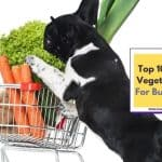 Top 10 Best Vegetables for Bulldogs