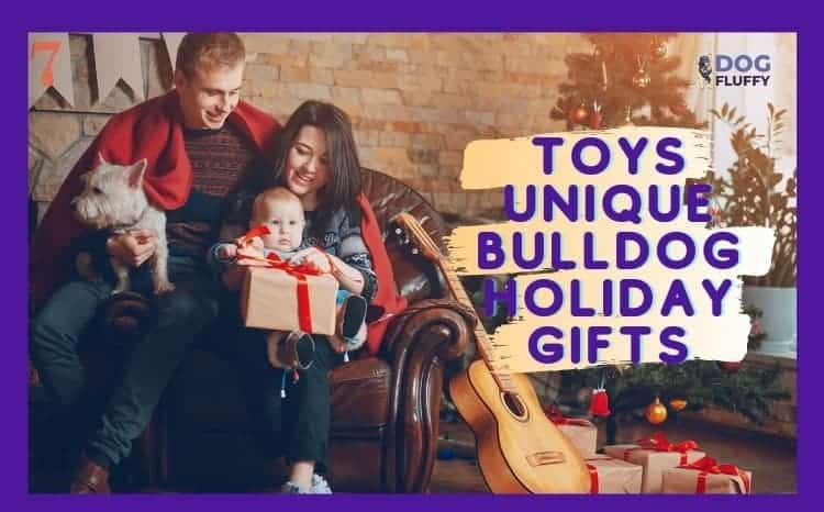 Toys - Unique Bulldog Holiday Gifts