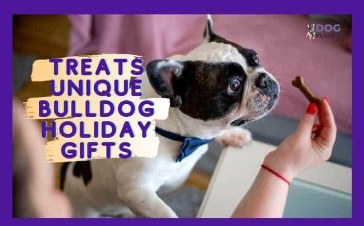 Treats - Unique Bulldog Holiday Gifts