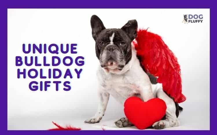 Unique Bulldog Holiday Gifts