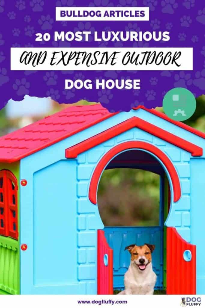 20 Most Luxurious And Expensive Outdoor Dog House