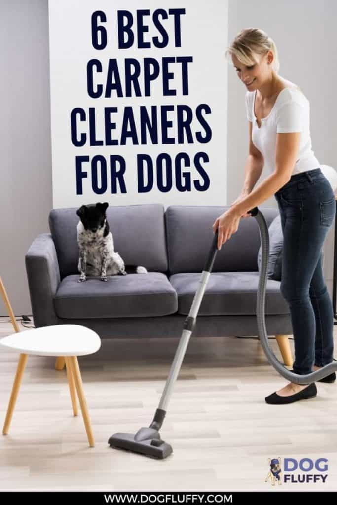 6 Best Carpet Cleaners for Dogs PIn Image
