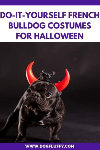 Do It Yourself French Bulldog Costumes For Halloween