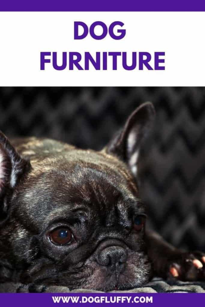 Dog Furniture - Unique Bulldog Holiday Gifts