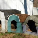 Best Insulated Dog House for 2 Large Dogs | Fits Two Large Bulldogs