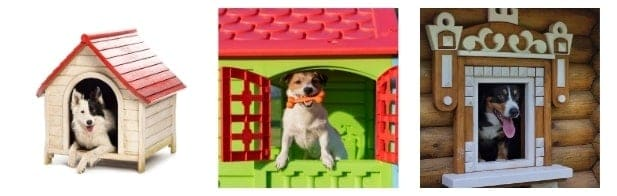 Outdoor Dog Kennel and Run Buying Guide
