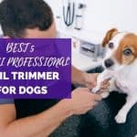 Best 5 Safari Professional Nail Trimmer for Dogs| Perfect For Bulldogs