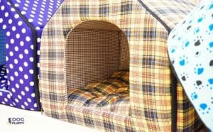 What Is The Warmest Dog House Featured Image