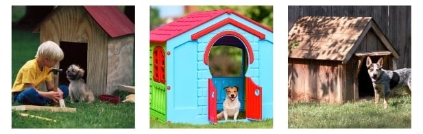 What Size Of Dog House Will Sit Right With My Bulldog