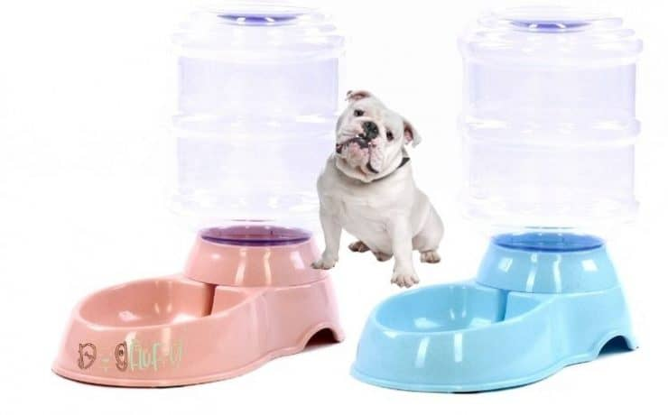 best bulldog water fountain Featured Image