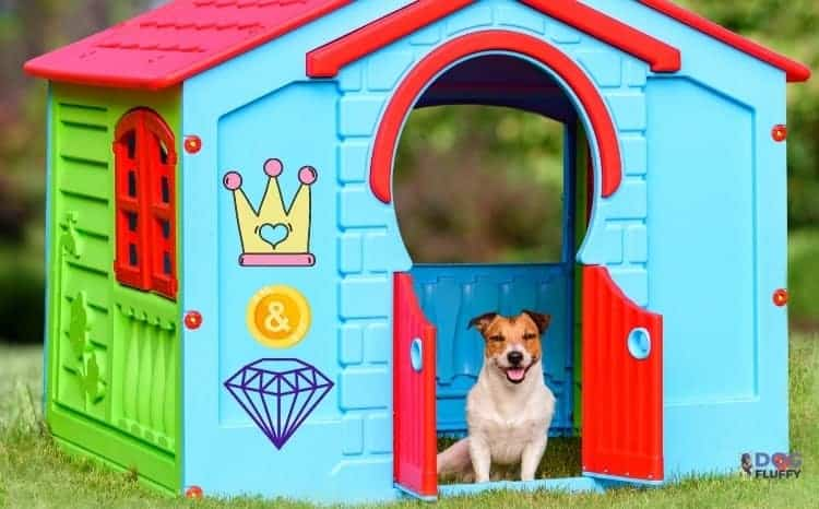most expensive luxury dog house