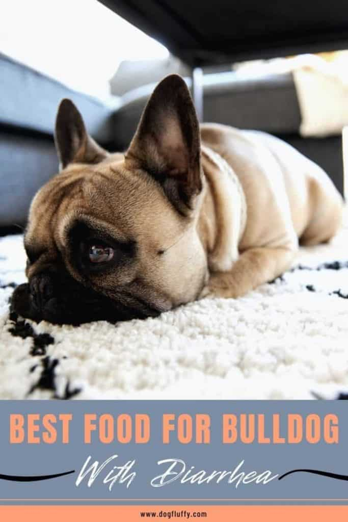 Best Food For Bulldog With Diarrhea Pinterest Image