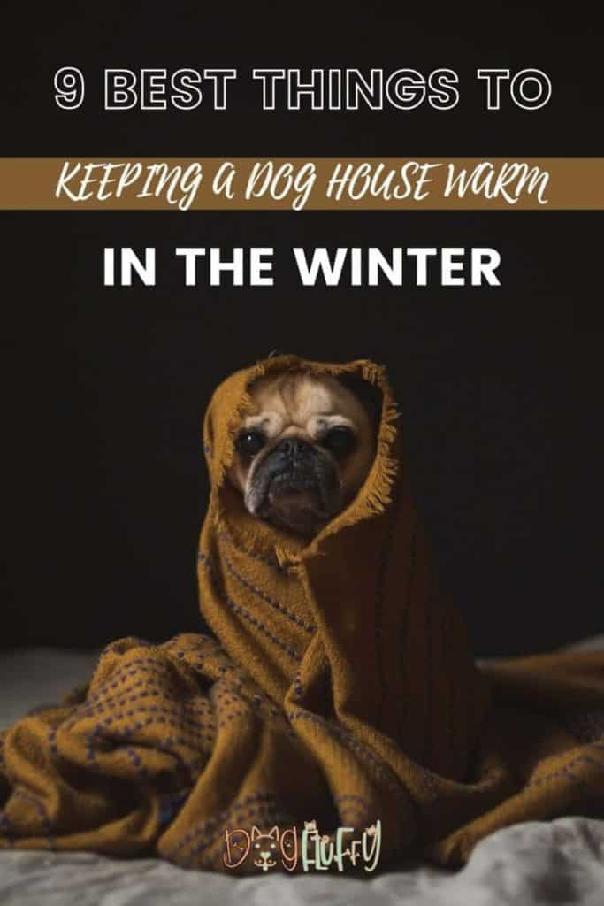 9 Best Things To Keeping a Dog House Warm in the winter Pin image