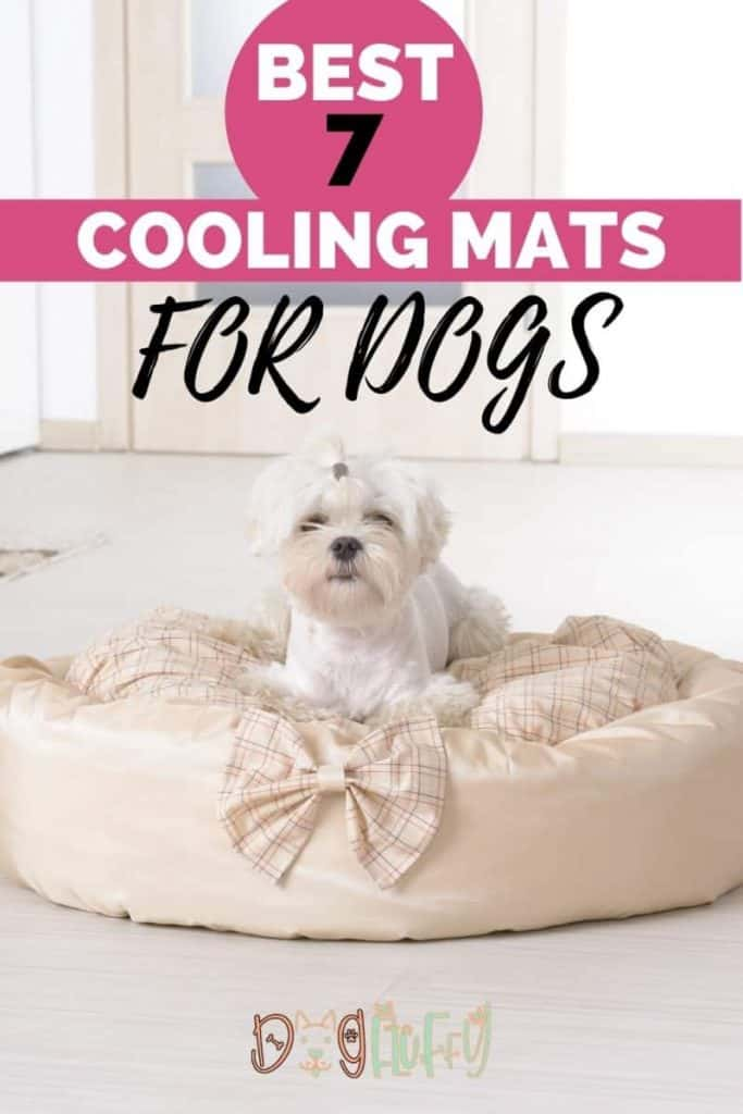 Cooling Mats for Dogs  Pin Image