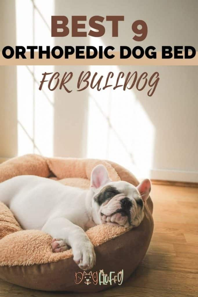 Orthopedic Dog Bed For Bulldog Pin Image