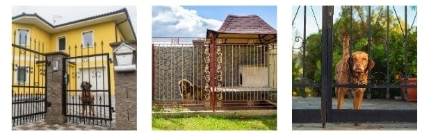 Why Choose a Metal Insulated Dog House Internal image