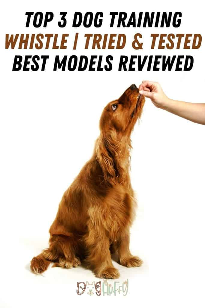 Top-3-Dog-Training-Whistle-_-Tried-Tested-Best-Models-Reviewed-Pin-Image
