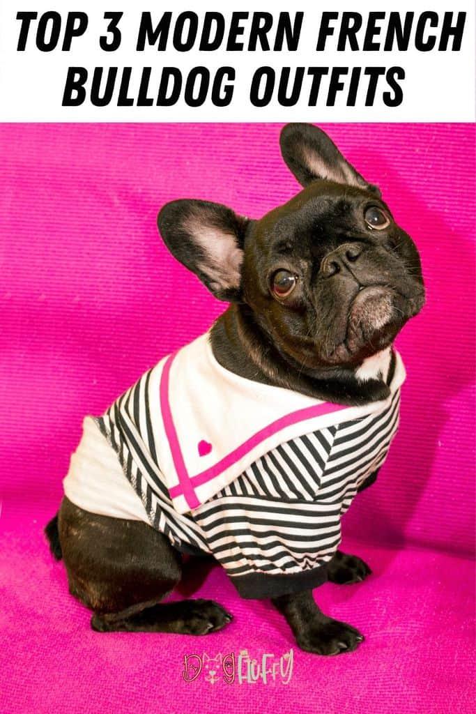 Top-3-Modern-French-Bulldog-Outfits-Pin-Image