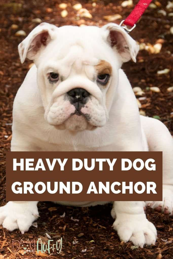 heavy duty dog ground anchor featured image