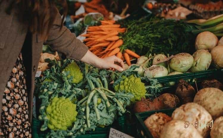 Vegetables For Homemade Dog Food