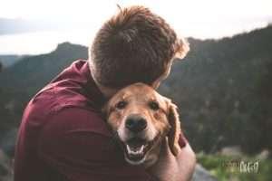Mental Health Benefits of Having a Pet
