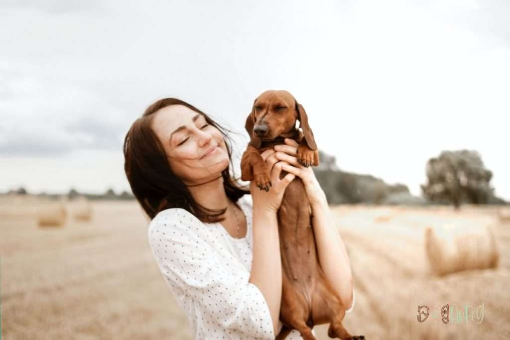 The best dog food for sensitive skin is available in one of 2 basic categories